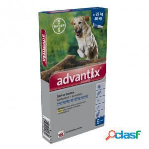 Advantix 400/2000 pour chien 2 x 4 pipettes