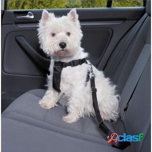 Harnais de marche avec ceinture pour chien s