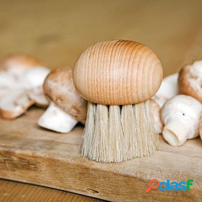 Brosse ã champignons