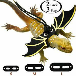 2 ensemble de laisse réglable de lézard harnais de dragon