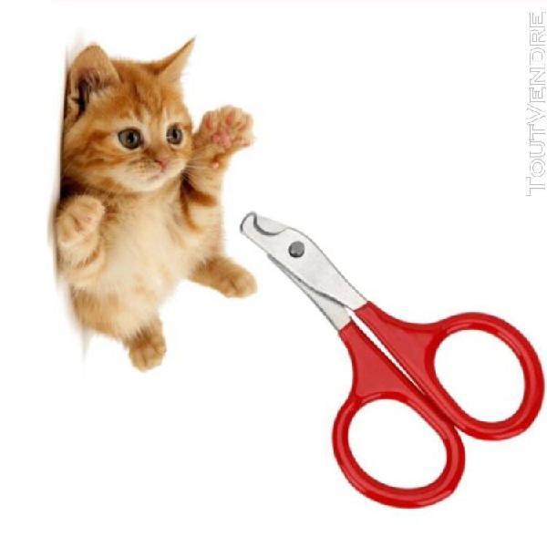 Pince à griffes toilettage acier inoxydable ciseaux chat
