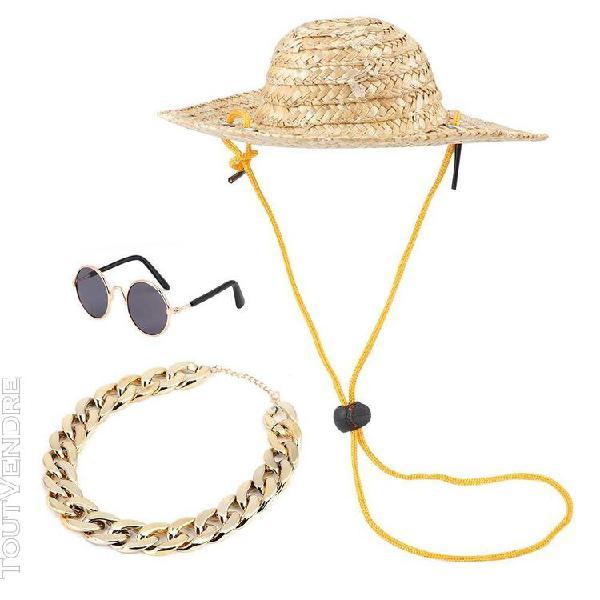 Chapeau de paille pour animaux de compagnie,lunettes pour an