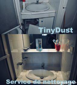 Tinydust entreprise de nettoyage bio à prix réduit