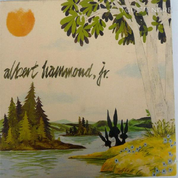 Cd albert hammond jr. yours to keep 2006 rock indépendant