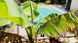 Vila tout confort clim piscine privée jardin tropi