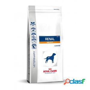 Royal canin veterinary diet renal select pour chien 3 x 2 kg