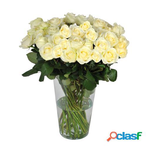 Rose blanche longue tige