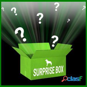 Brekz surprise box edition limitée pour chien par unité