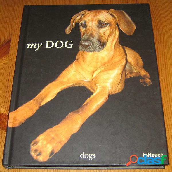 My dog, dogs