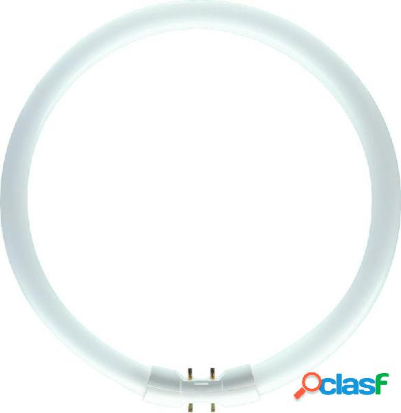 Philips tl5c 22w 830 (master)   blanc chaud