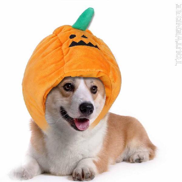 Peluche jaune halloween citrouille chapeau pour animaux de c