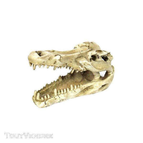 Reptile vivarium décoration aménagement paysager crâne