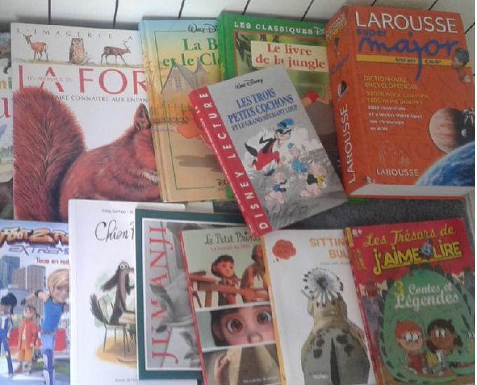 Vends 15 livres divers enfants (710 ans) – dreux – 10