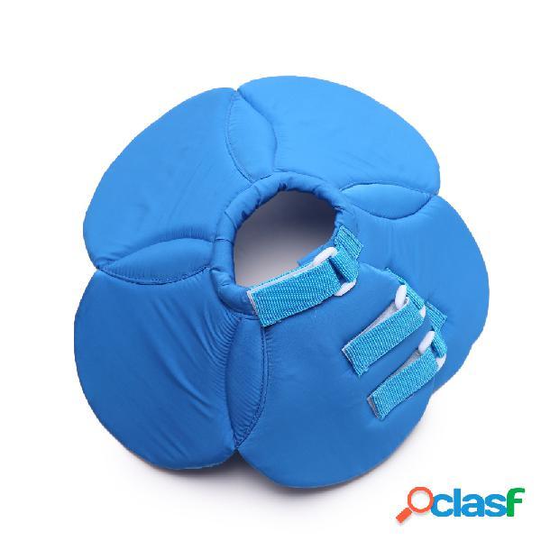 Collier bleu chien chiot chat élisabéthaine cicatrisation e-collier de protection