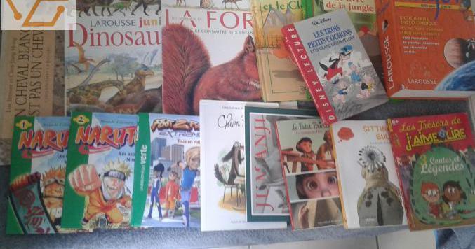 15 livres divers enfants (7/10 ans) – 10 eu...
