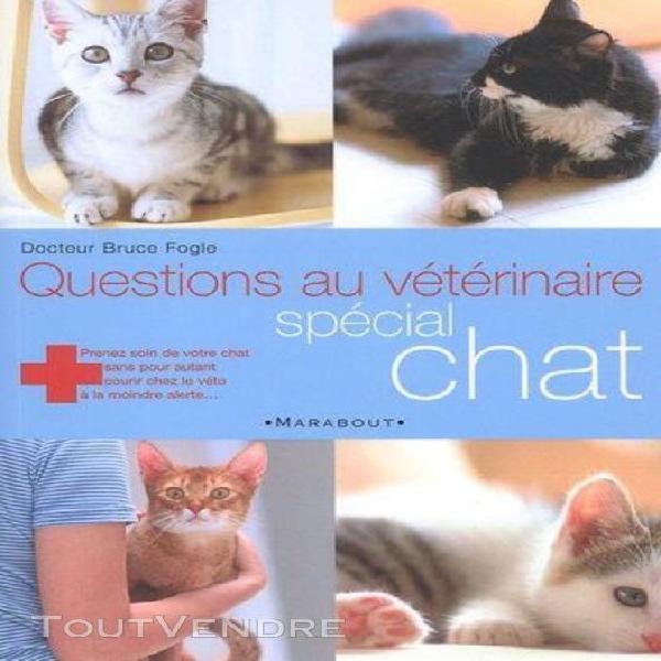 Questions au vétérinaire spécial chat