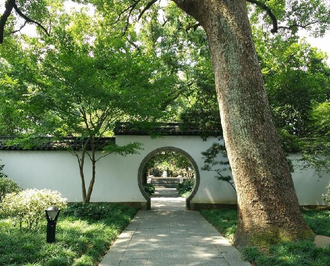 cours de chinois et initiation aux coutumes chinois