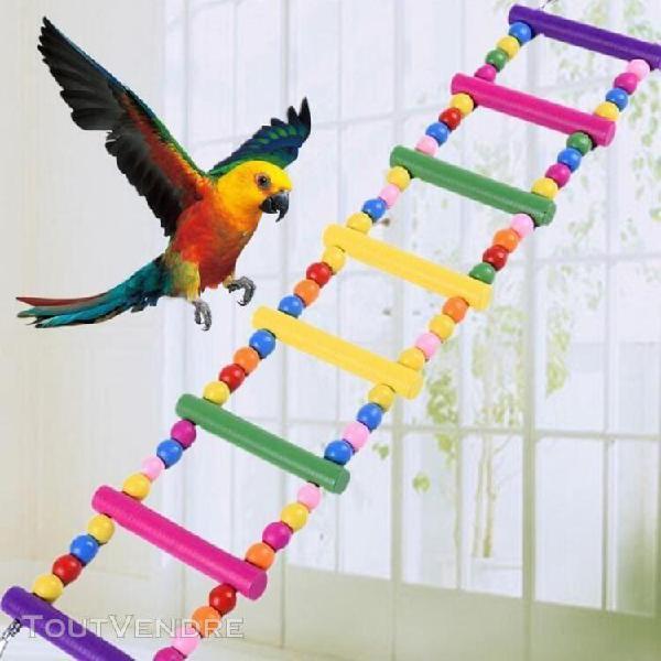 Oiseau pont tournant en bois échelle climb calopsitte