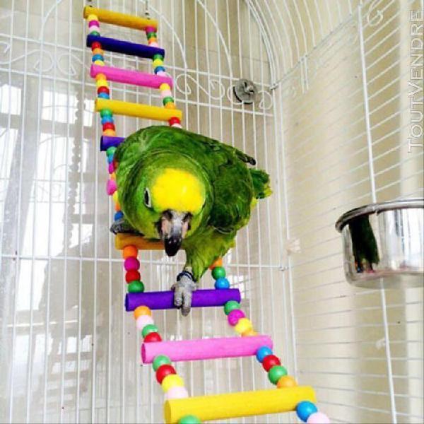 Oiseau swing pont en bois échelle grimper cockatiel