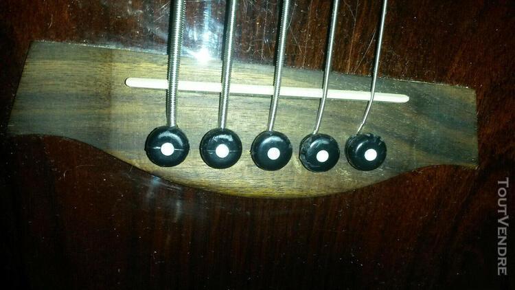 Basse électro-acoustique 5 cordes ibanez ewb205wne-nt