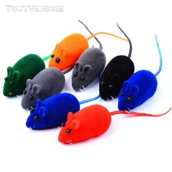 Jouet petite souris chat pour animaux jouets animaux domesti