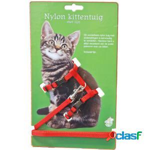 Harnais pour chaton avec système de clic noir