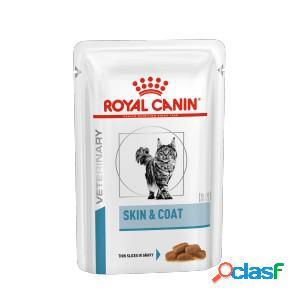 Royal canin skin & coat sachets pour chat 4 x (12 x 85g)