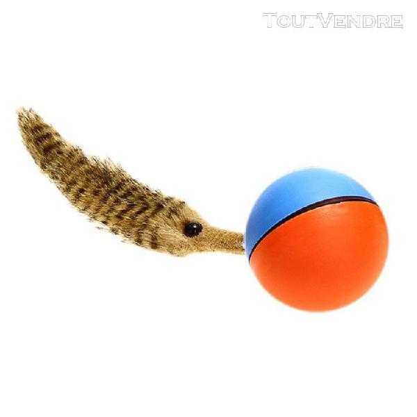 Jouet pour animaux balles colorées pour chiens chats chiot