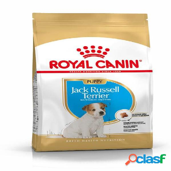 Royal canin puppy jack russell terrier pour chiot 3 x 3 kg