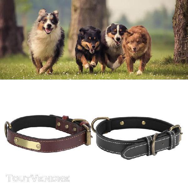 Collier pour animaux de compagnie collier de chien personnal