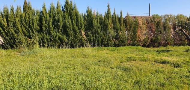 Terrain à vendre albi 1 pièce 500 m2 tarn