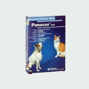 Panacur vermifuge 250mg chiens & chats boite 10 comprimés 1