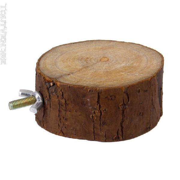 Gazechimp dia. 3,15 à 3,54 pouces ronde en bois perroquet