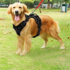 Harnais chien anti traction pour gros grande moyen petite l