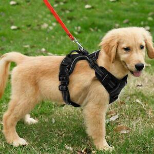 Harnais chien anti traction pour gros grande moyen petite m