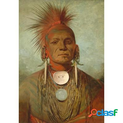 George catlin: see-non-ty-a, homme medecine de l'iowa medicine man, 1844-1845