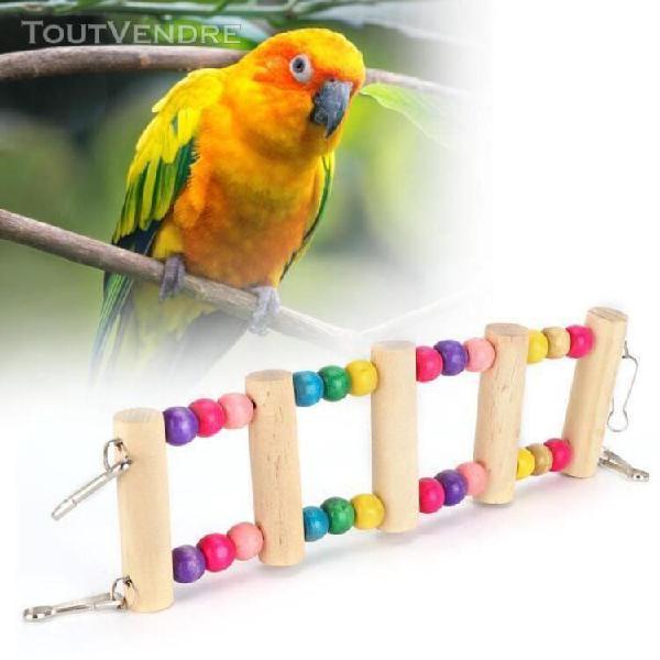 Pont suspendu pour animaux de compagnie jouet escalade en bo