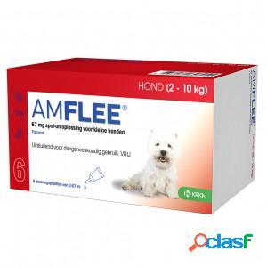 Amflee Spot-On 67 mg pour chien S 2 - 10 kg FIN DE STOCK 2 x 6 pipettes
