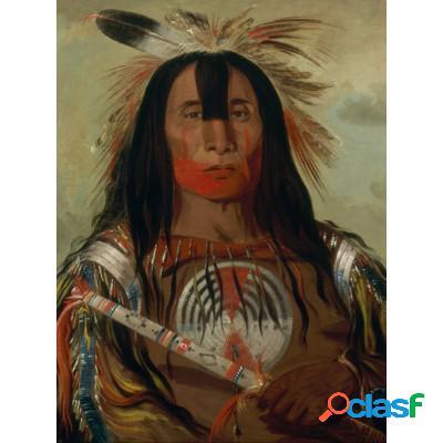 George Catlin: Stu-mick-o-súcks, Buffalo Bull's Back Fat, Head Chief, Blood Tribe, 1832
